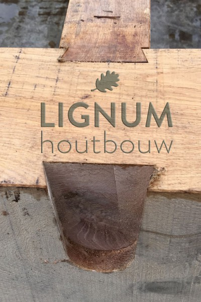 lignum guys Both verawood and lignum vitae (the real kind) are very fragrant  never really  wanted one till you guys started talking about how it improves.